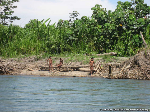 Tribe on riverbank. Photo courtesy of Survival International.