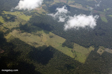 Deforestation for cattle ranching in the Peruvian Amazon. Photo by: Rhett A. Butler.