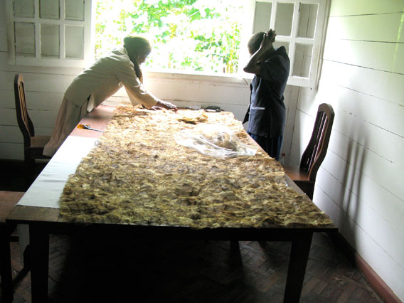 Making non-spun textile with Malagasy silk. Photo by: Catherine Craig.