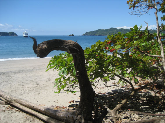 Costa Rica scenery with a tourist boat in the background.