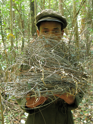 Member of a survey team holds confiscated snares.  Photo by William Robichaud.