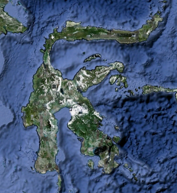 The bizarrely shaped island of Sulawesi as seen from Google Earth.