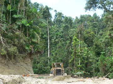 Destroying primeval rainforest by road construction and selective logging, Halmahera. Photo: Dmitry Telnov, 2007.