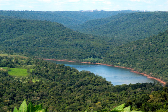 Overlooking the Atlantic Rainforest and Uruguay River in Misiones, then onwards to neighboring Brazil. Photo by: WLT.
